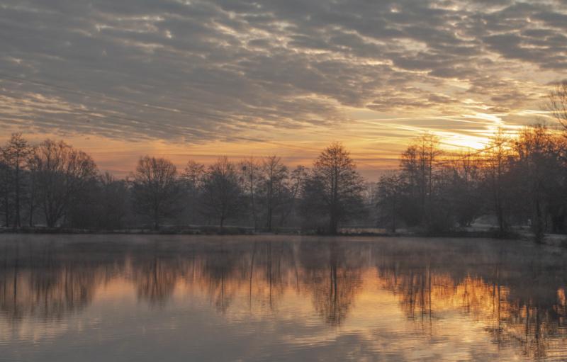 Les étangs se réveillent 2... Img_0111