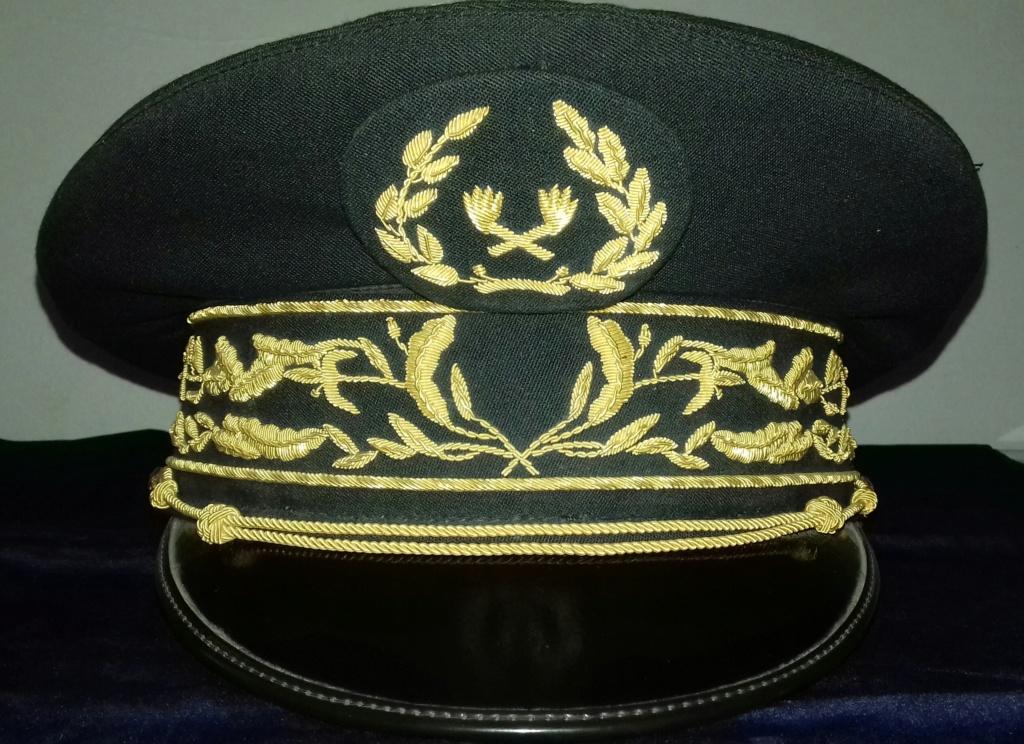 Casquette du Service des Essences des Armées (?) Casque12