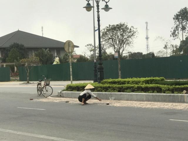 Tép Khô Sầm Sơn  Img-8e10