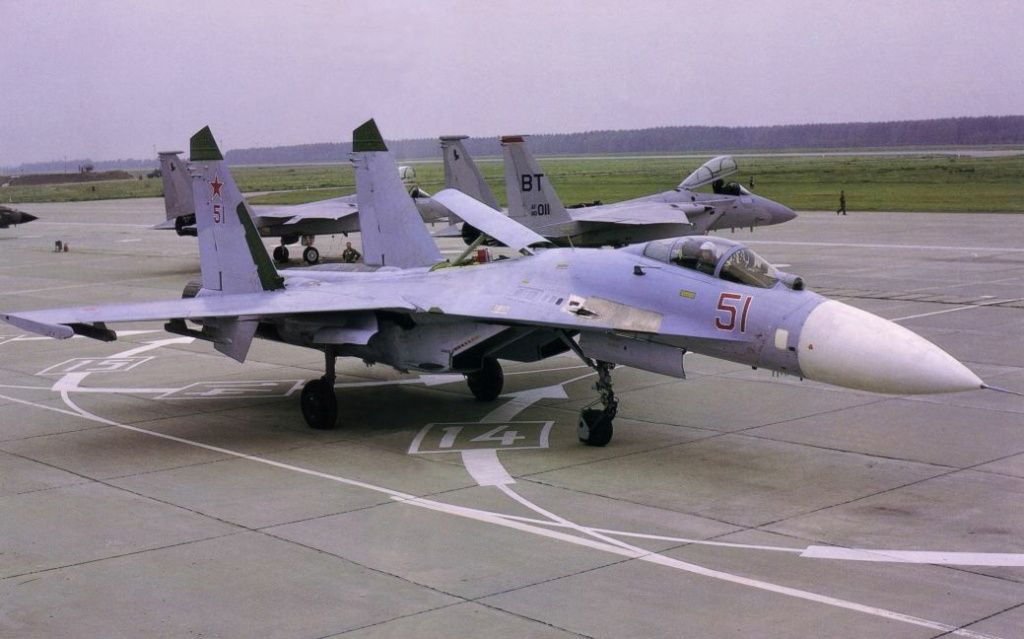 Su-30 for Russian Air Force #2 - Page 6 Su27-f10