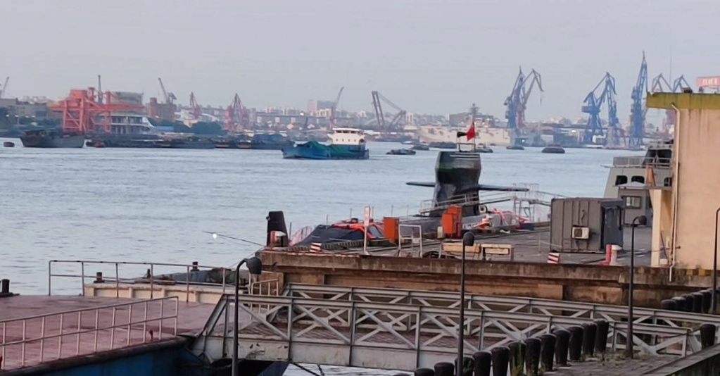 PLA Navy and Naval Air Force - Page 27 Type0310