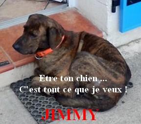 Jimmy10