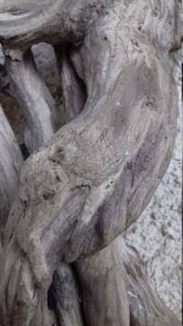 Sculpture sur bois flotte 20200416