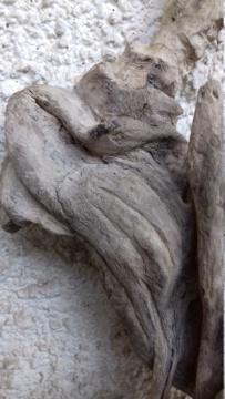 Sculpture sur bois flotte 20200417