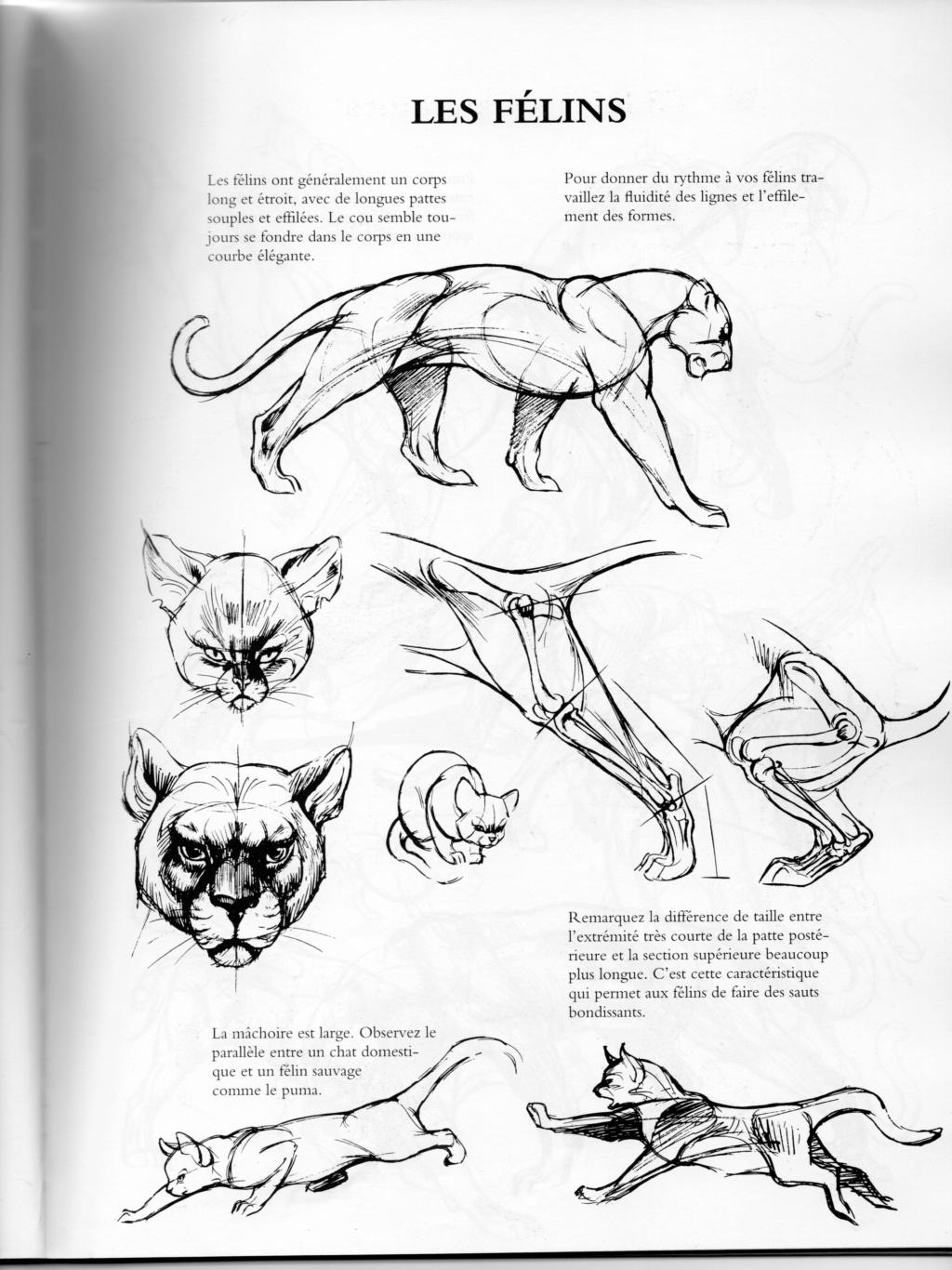ANIMAL - Page 8 Fzolin12