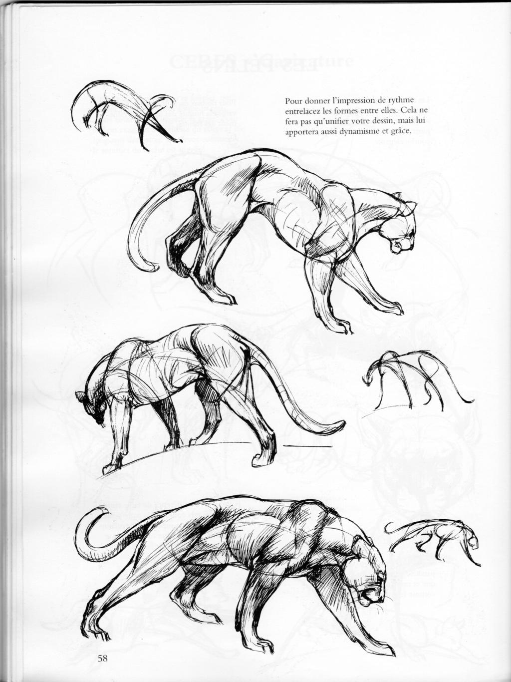 ANIMAL - Page 8 Fzolin13