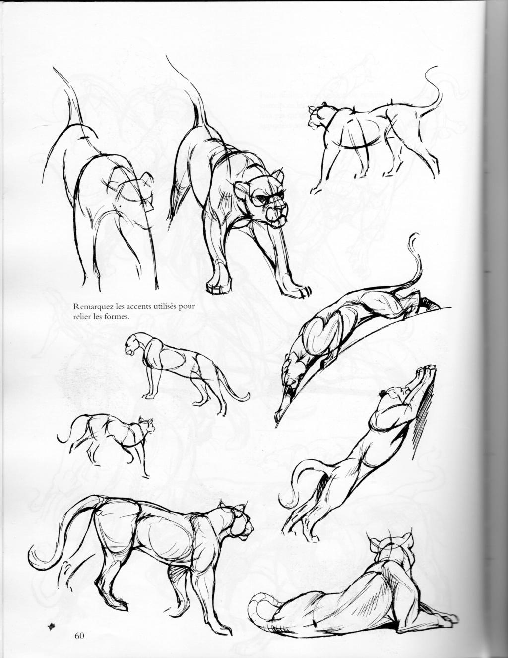 ANIMAL - Page 8 Fzolin15