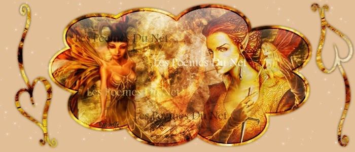 Les poemes du net