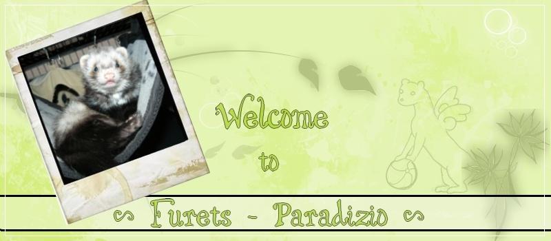 Furets Paradizio