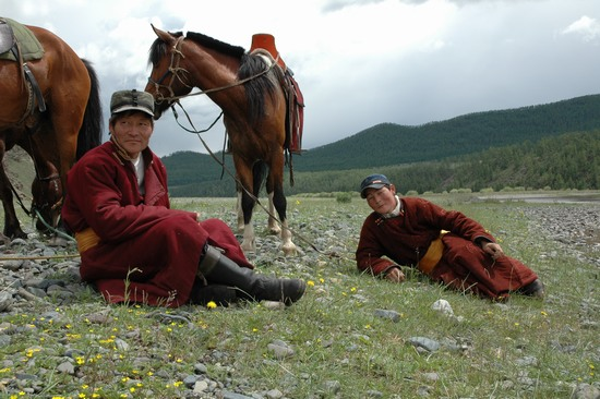 Mongolie Cheval10