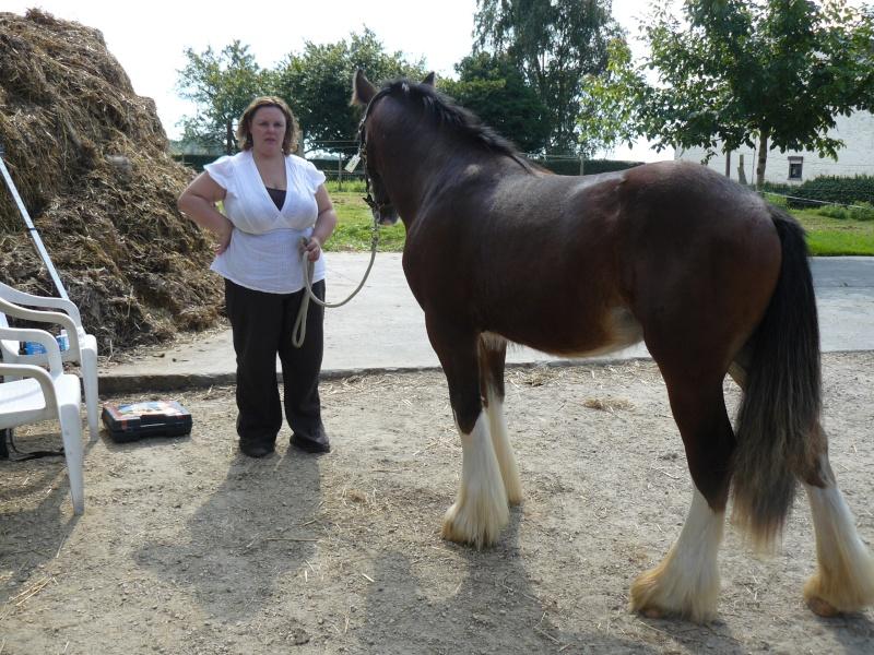 Une photo de vous et votre cheval Twix_m10