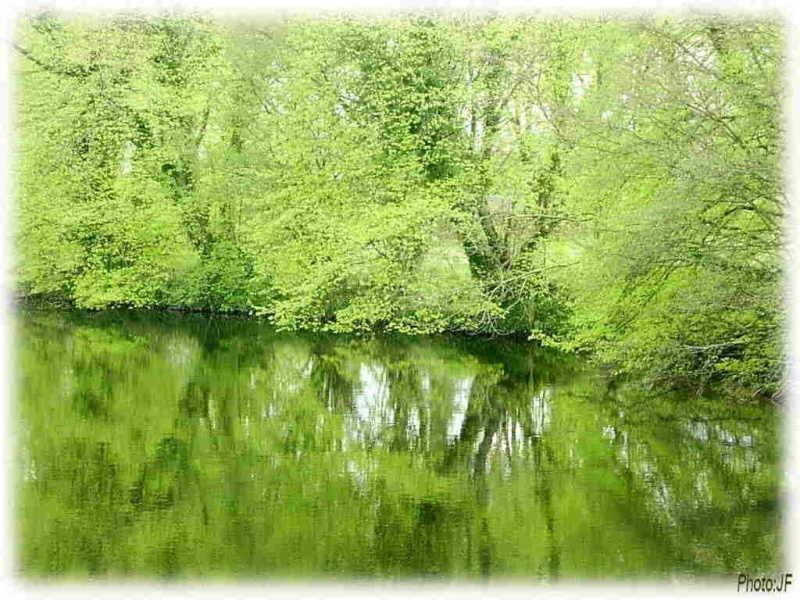 la rivière de mon enfance et d'aujourd'hui Reverd12