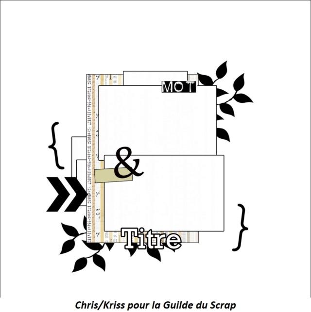 Sketch des modos janvier21 Kriss13