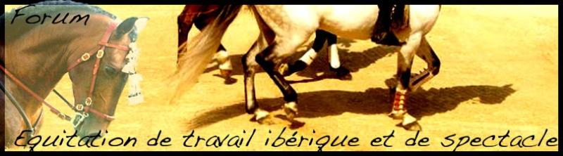 forum équitation de travail ibérique et de spectacle