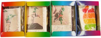 [Peinture, sculpture, vidéo...] Takashi Murakami - Page 5 P210