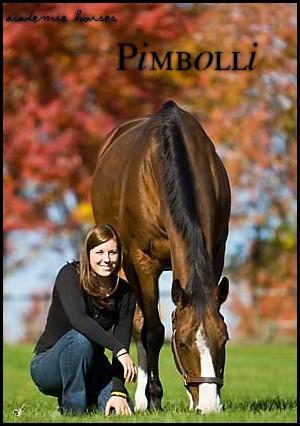 Pimbolli -  3 000 € 421110