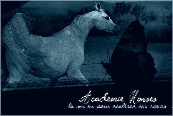 Academie Horses