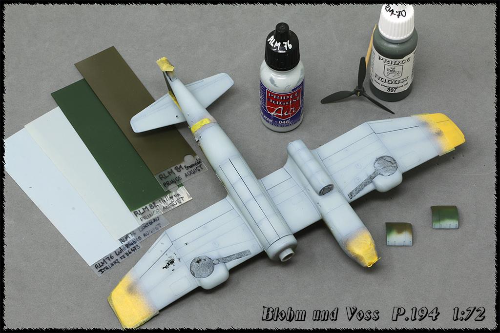Blohm und Voss BV P 194, Front de l'est 46 (1:72 Revell) - Page 3 Img_8140
