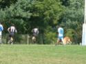 Photos du match à Habas P9270032