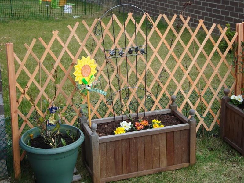3 heures de jardinage et voilà le résultat Dsc00316