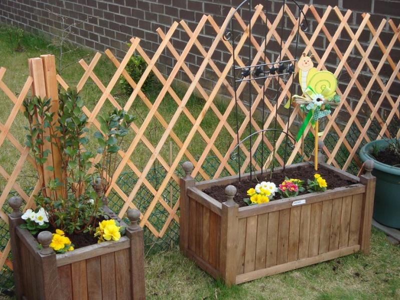 3 heures de jardinage et voilà le résultat Dsc00317