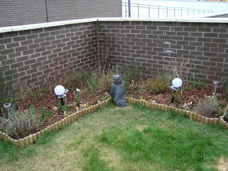 3 heures de jardinage et voilà le résultat Dsc00321