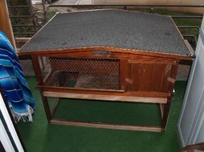 voici la nouvelle maison de mes cochons d'inde , 63684110