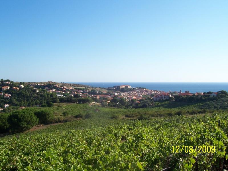 La Mar y Monts, Argeles sur Mer le 12 Août 2009 100_4014