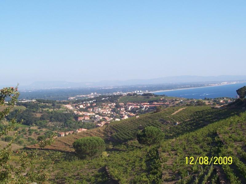 La Mar y Monts, Argeles sur Mer le 12 Août 2009 100_4015