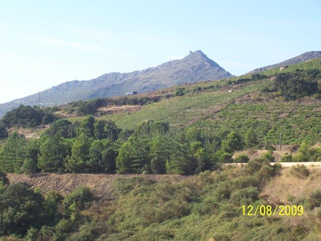 La Mar y Monts, Argeles sur Mer le 12 Août 2009 100_4022
