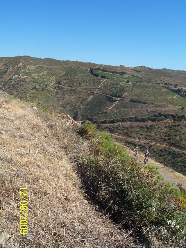 La Mar y Monts, Argeles sur Mer le 12 Août 2009 100_4029