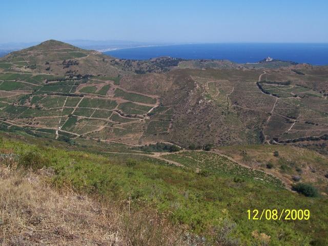 La Mar y Monts, Argeles sur Mer le 12 Août 2009 100_4037