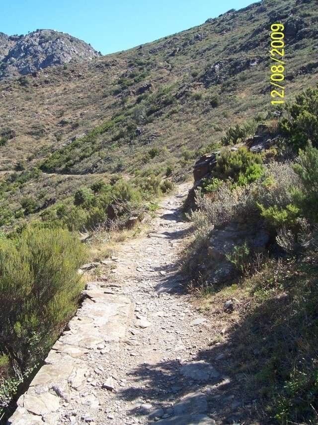La Mar y Monts, Argeles sur Mer le 12 Août 2009 100_4042