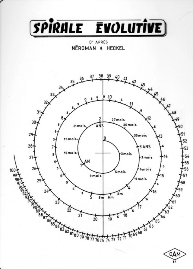 Spirale évolutive de Don Neroman Screen62