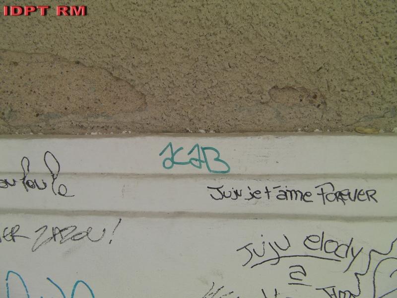Graffiti et tags ultras Tag_se17