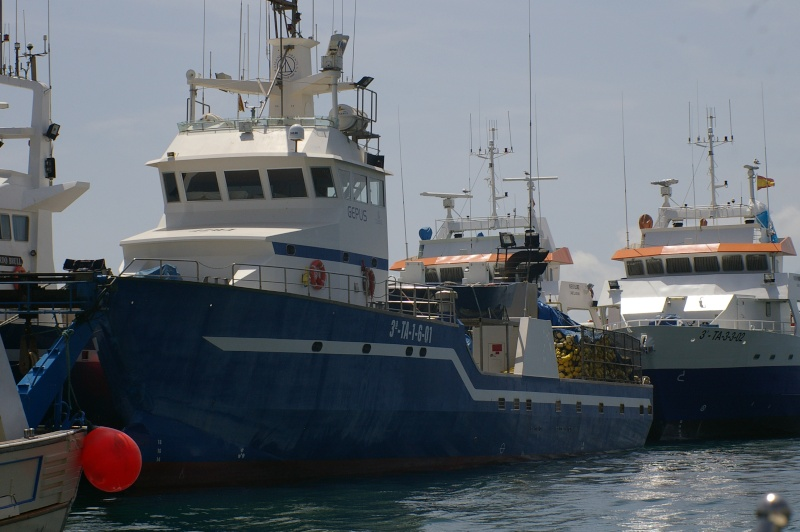 La pêche au thon rouge: tonnara, almadraba, mattanza et tutti quanti... Imgp2610