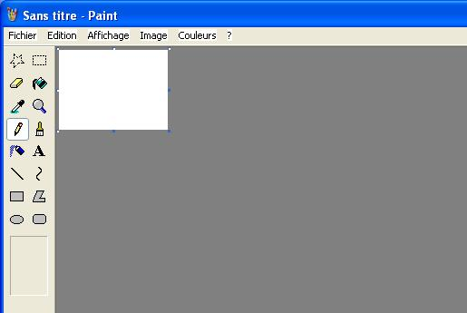 probleme cpture image Paint10