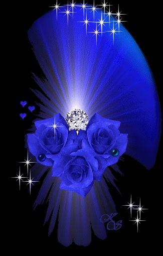 Sanny...la figlia dei fiori! - Pagina 4 Rosa2010