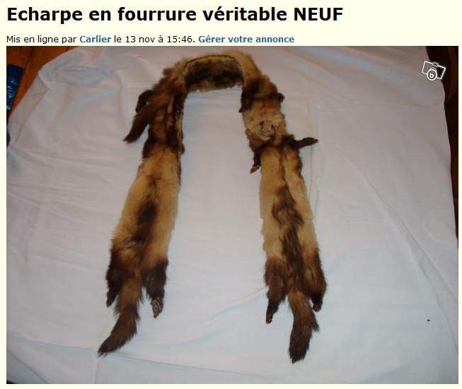 Pétition contre la production, la vente et l'importation de fourrure Fourru10
