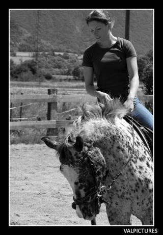 Mes photos de chevaux... - Page 4 101110