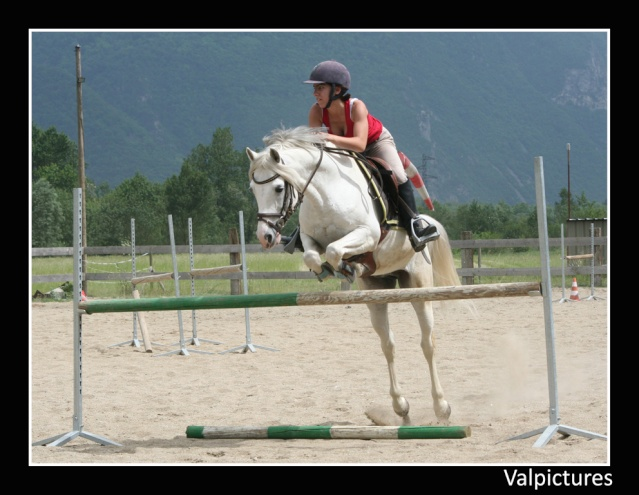 Mes photos de chevaux... - Page 3 510