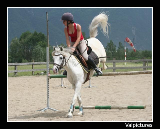 Mes photos de chevaux... - Page 3 610