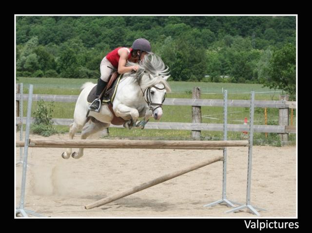Mes photos de chevaux... - Page 3 710