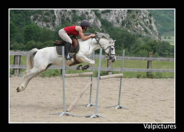 Mes photos de chevaux... - Page 3 910