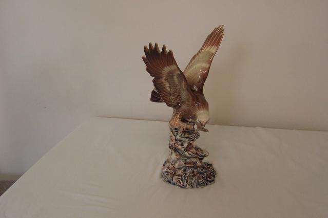 The Stunning Aquila Eagle Eagle_18