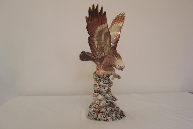 The Stunning Aquila Eagle Eagle_19