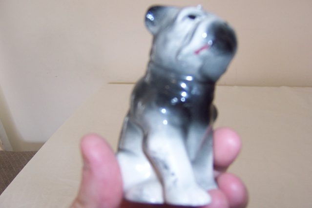 Could this be a Crown Lynn Dog?? Eagle_26