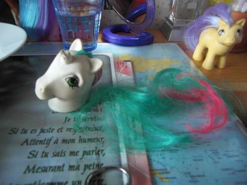 Customs d'unicorn Cimg4714