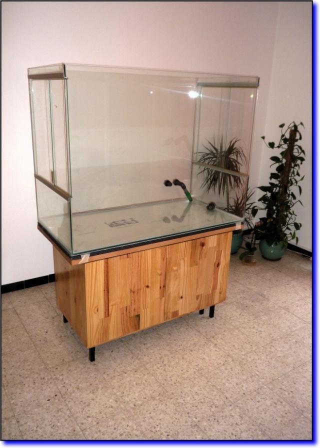 Aquaterrarium de Patrice_B Bouist11