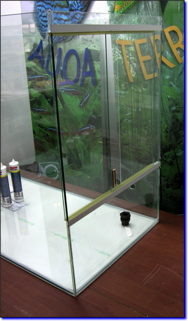 Aquaterrarium de Patrice_B Bouite10